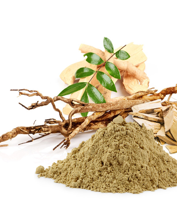 Standardized Tongkat Ali Root Extract Bionutricia Extract